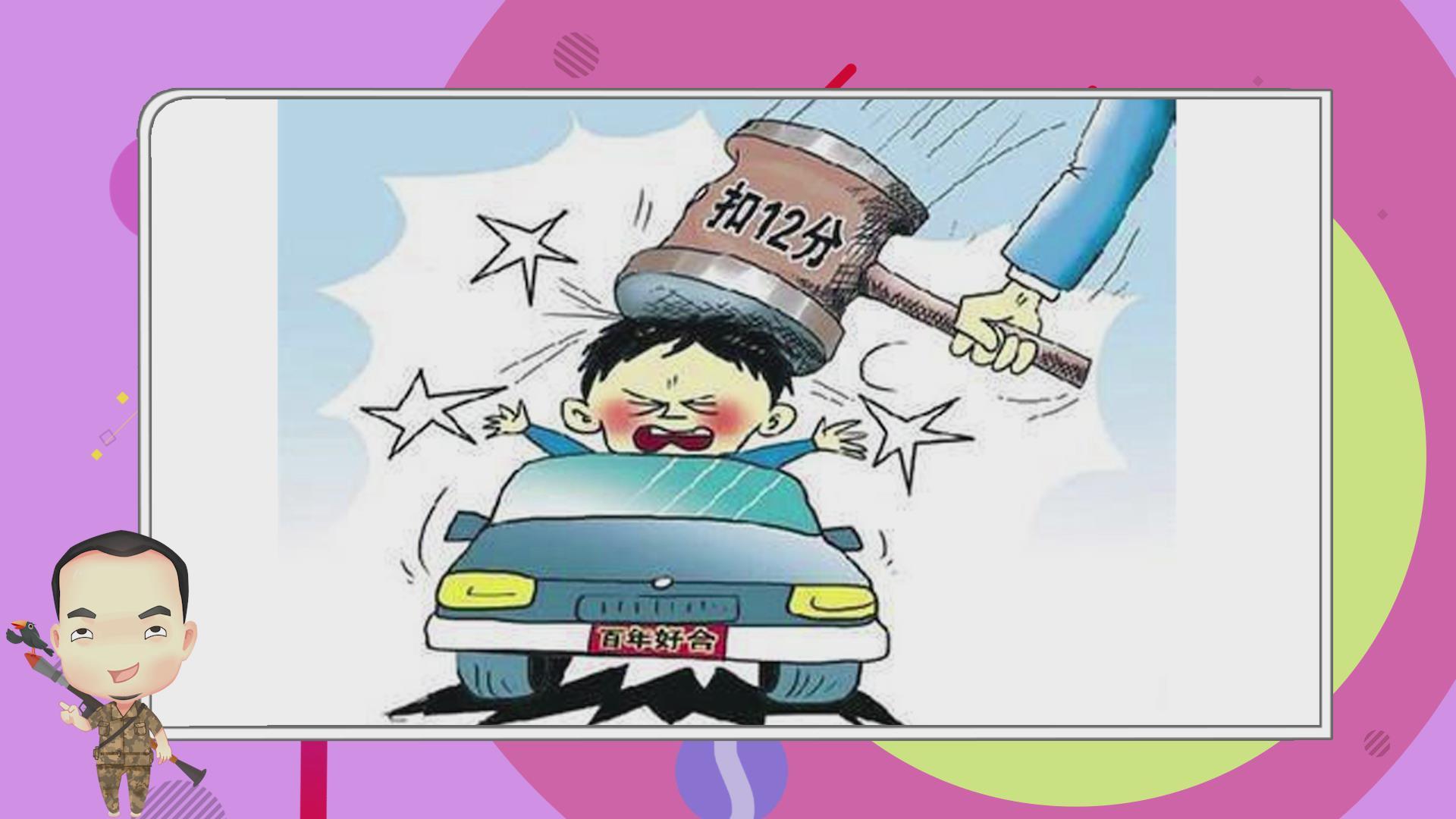 小乌鸦第十四期-驾驶证