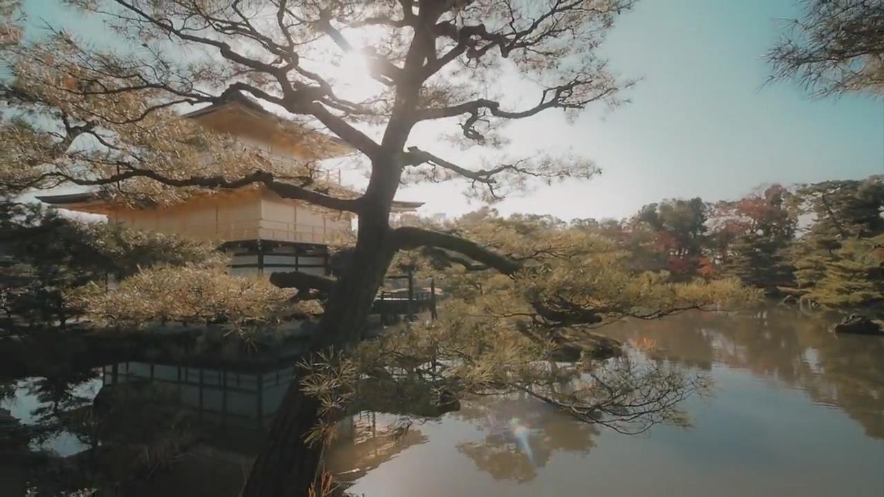 【京都篇】2017 日本京都 in 4K摄影